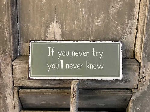 Schild:  if you never try...