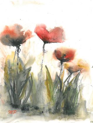 Poppies I.