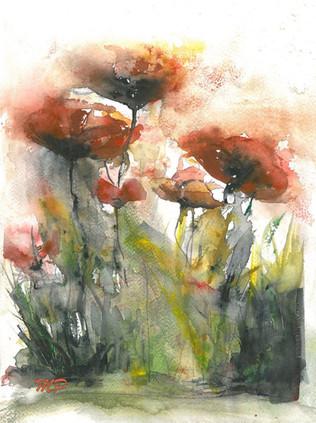 Poppies II.
