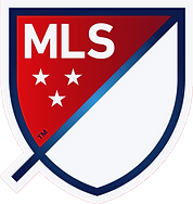 mls_edited.png