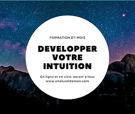 Visuel formation intuition.PNG