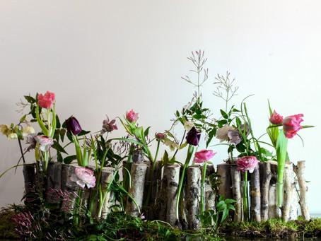 お花を楽しむ会 3月のスケジュール