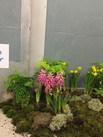 Flower Instaration for OrfeoTagiuri