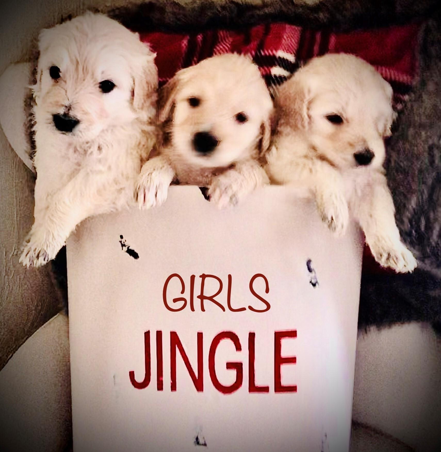 Girls Just Wanna Have Fun!