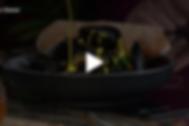 Screen Shot 2019-03-04 at 12.46.32 PM.pn