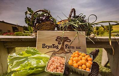 BrynTeg Farm.jpg