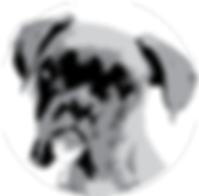 Bark River CrossFit | Delafield, WI