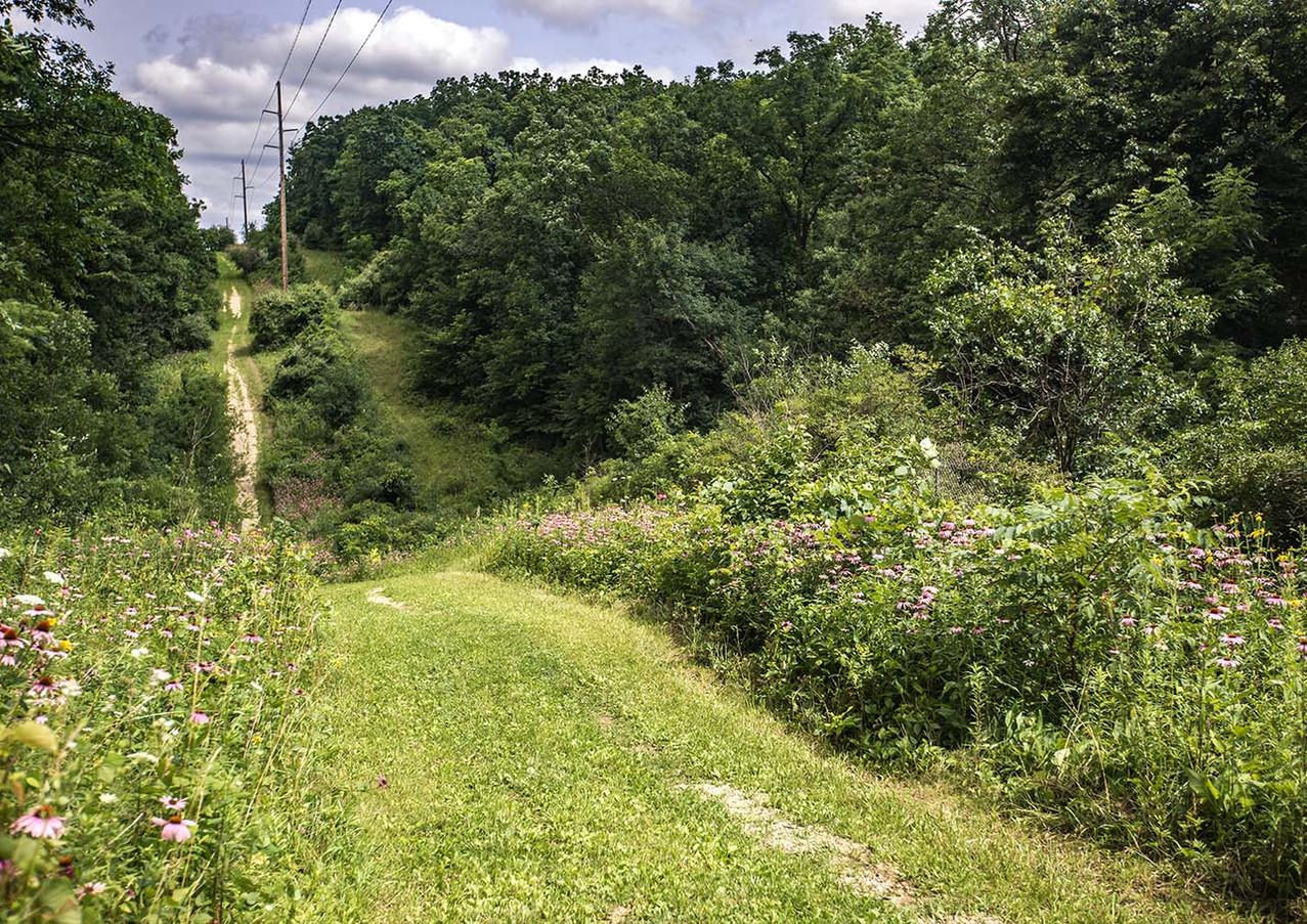 Arbor_Ridge_0030.jpg