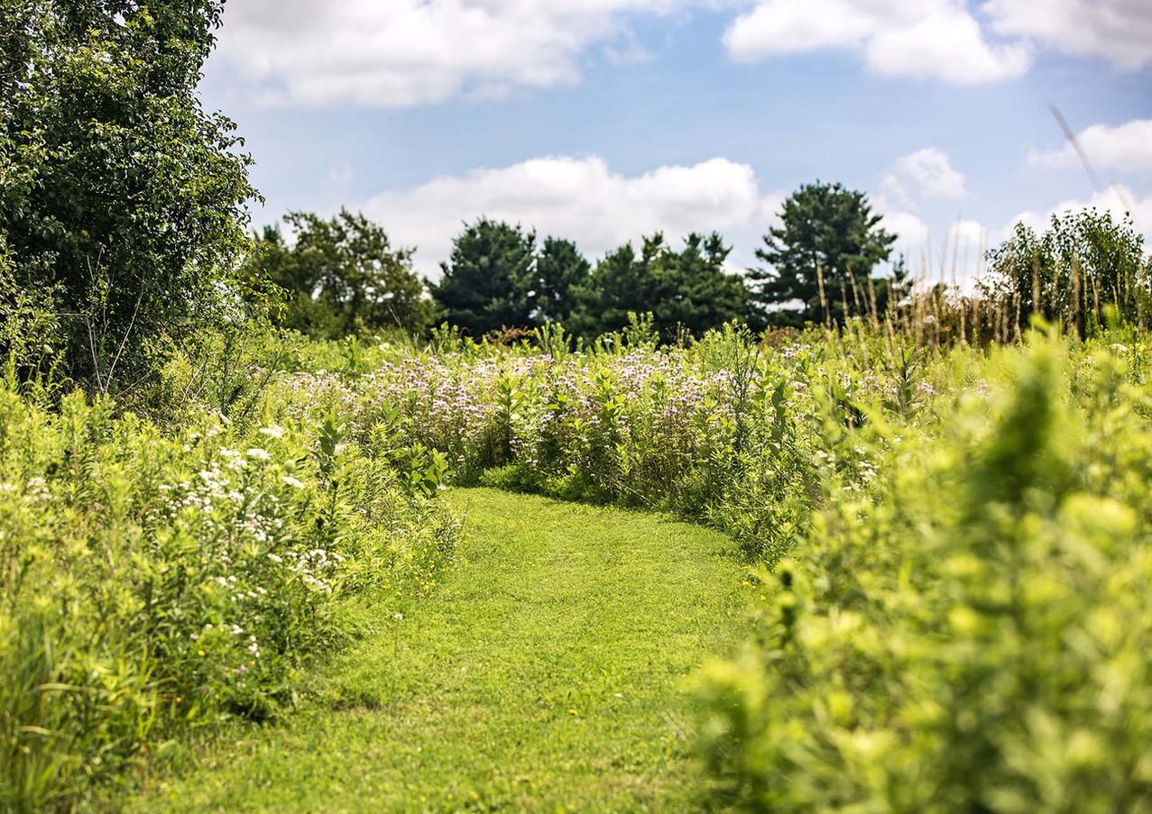 Arbor_Ridge_0036.jpg