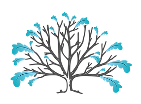 BAPL feather family tree 2.png