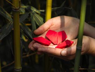 SELF-LOVE CHALLENGE : 1 défi par jour pour apprendre à s'aimer
