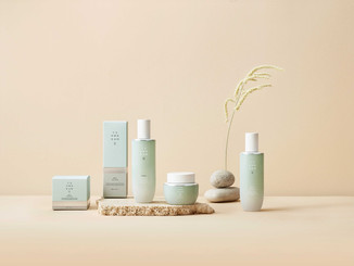 THE ULTIMATE NATURAL HYDRATION SKINCARE LINE IS HERE! – THE FACE SHOP YEHWADAM ARTEMISIA!