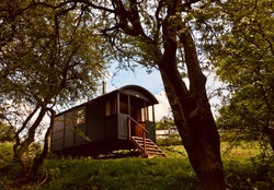 Red Kite Cabin