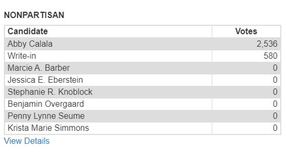 School Board Member Results.PNG