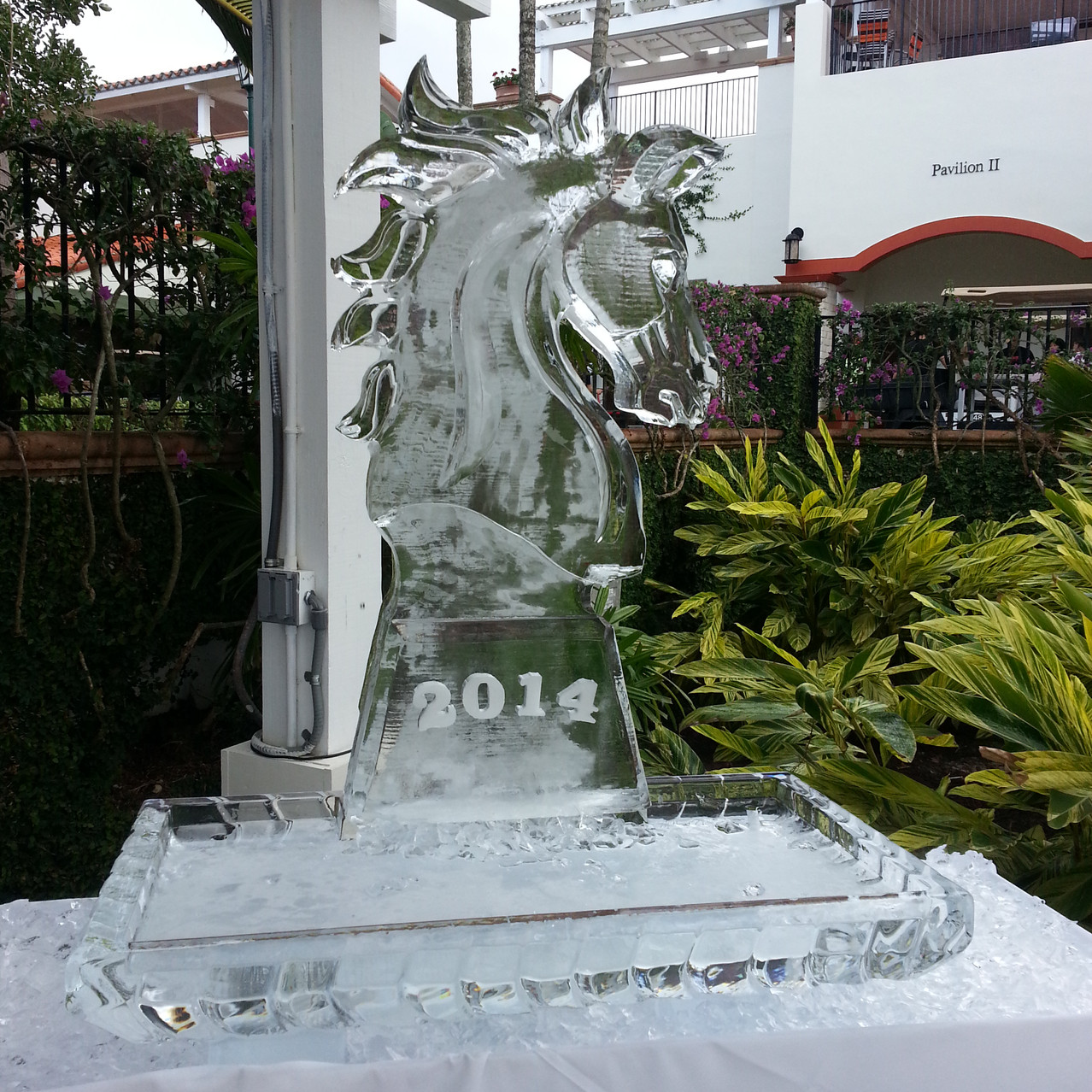 Horse Head with Year Styled Ice.jpg