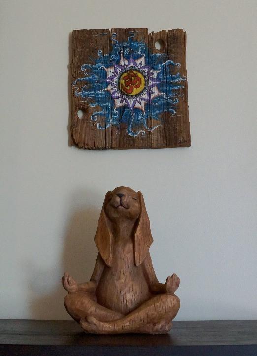 Zen Bunny Lala Hot Yoga