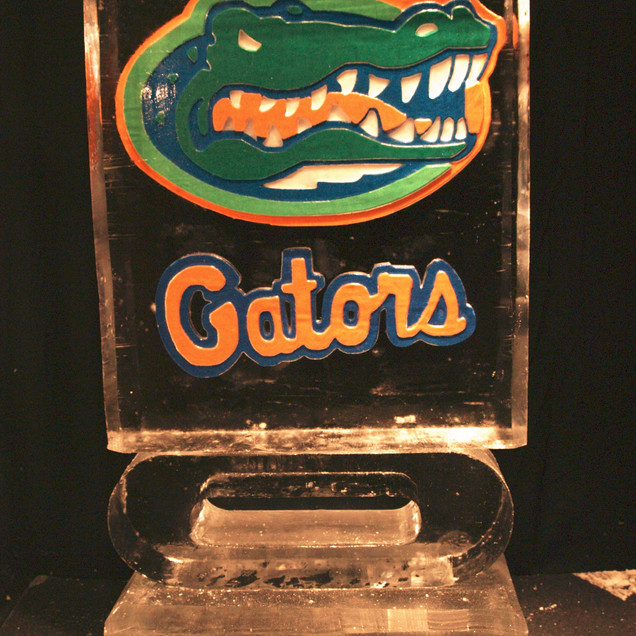 Florida Gators Color Styled Ice.JPG