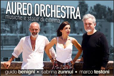 Aureo Orchestra Loc 3 low res (1).jpg