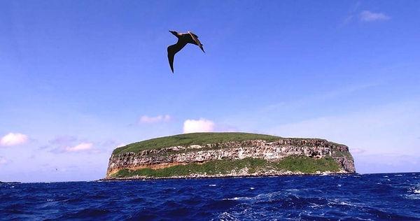 darwin island2.jpg