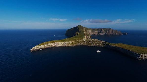 wolf island2.jpg