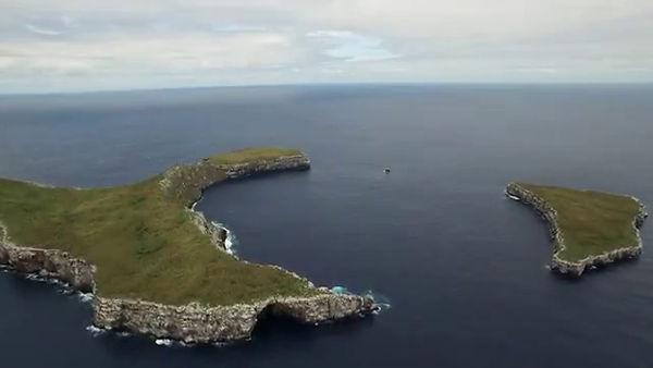 wolf island.jpg