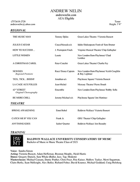 Andrew Nelin Resume.png