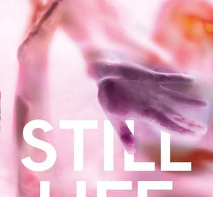Still Life, by Isobel Hart