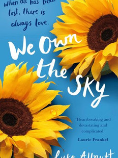 We Own The Sky, by Luke Allnutt