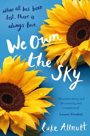 We Own The Sky, by Luke Allnut