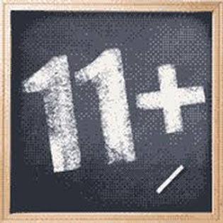 11 plus 1.jpg