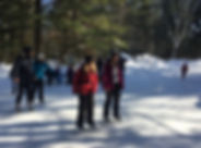 Group of People Ice Skating throgh the Woods