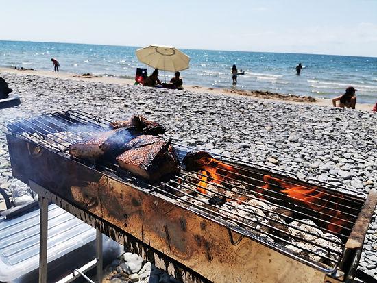 North Beach Provincial Park Beach BBQ