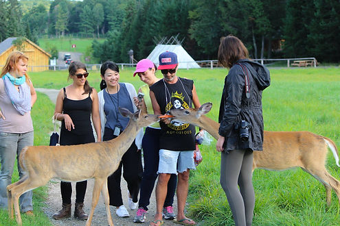 Feeding deers at Omega Parc. Guy standing in the middle of group of 6 people is feeding animals with carrots