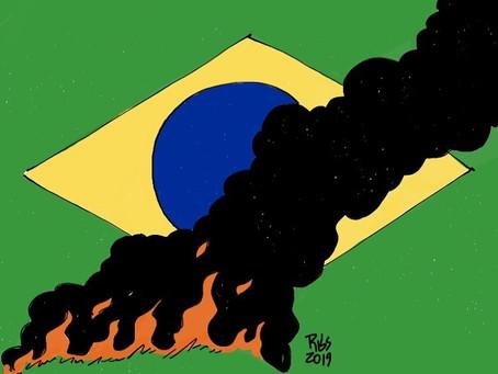 Un país en llamas: la actual política ambiental en Brasil