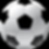 Soccer_Ball_PNG_Clip_Art-1361.png