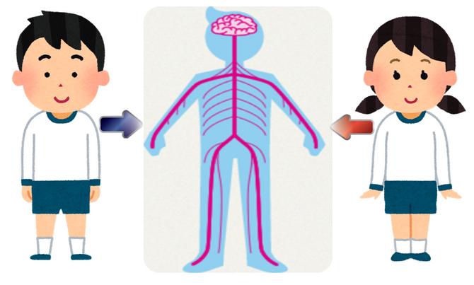 運動神経について