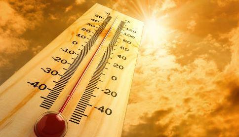 暑熱順化を考える