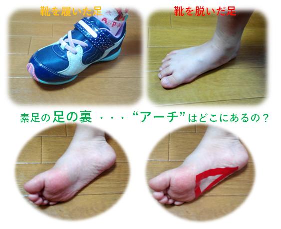 足の裏の秘密