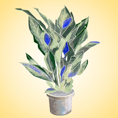 theplant.png