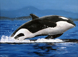 Leap of the Orca