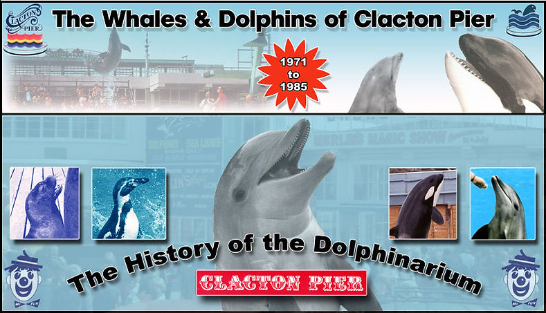 The Whales and Dolphins of Clacton Pier