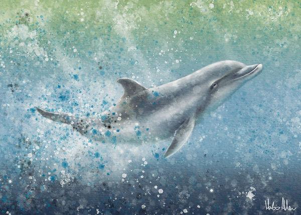 DolphinDelight.jpg