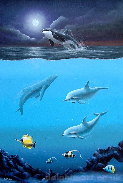 Whale Harmony