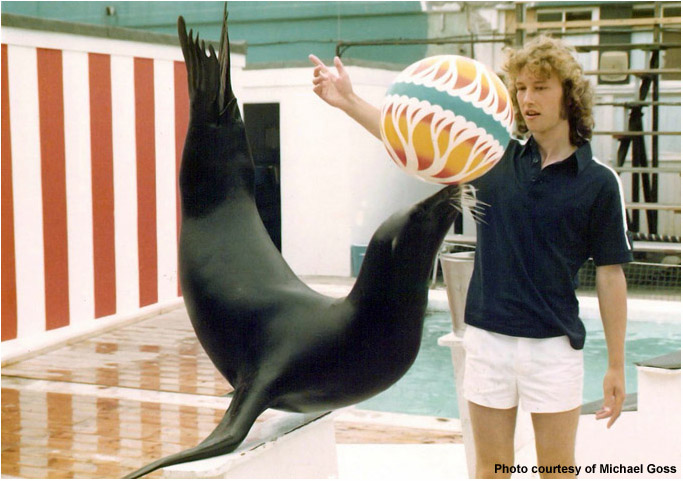 SEA LION TRAINER