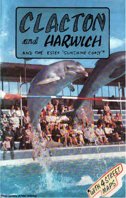 DOLPHIN COVER