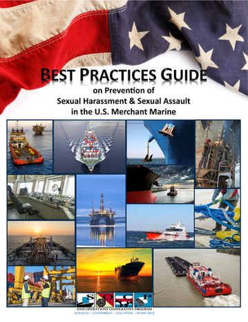 SASH Best Practices Guide