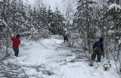 Cleaning up from winter storm