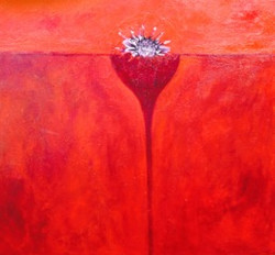 Plant on Red 2
