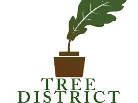 Guest Post: Tree District Books