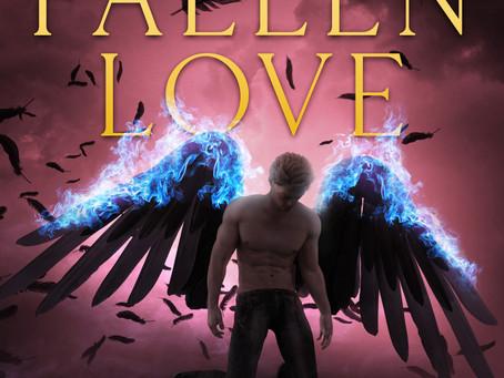 Review of Fallen Love by Alex Stargazer